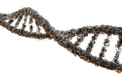 Variabilidad en genes de respuesta inmune y predicción de infección grave por SARS-CoV-2 (estudio INMUNGEN-CoV2)