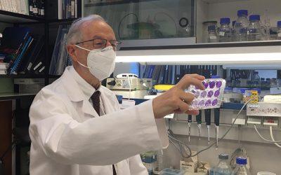 El CSIC trabaja en tres prototipos de vacuna para la covid-19